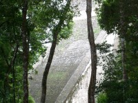 Temple Stairs - Tikal, Guatemala